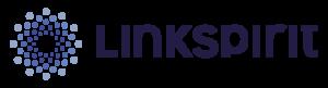 linkspirit sicurezza informatica logo